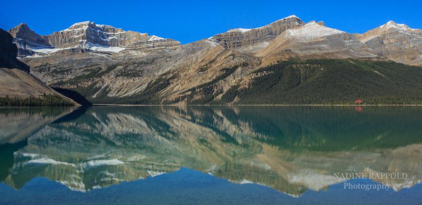 Bow Lake Spiegelung, Kanada