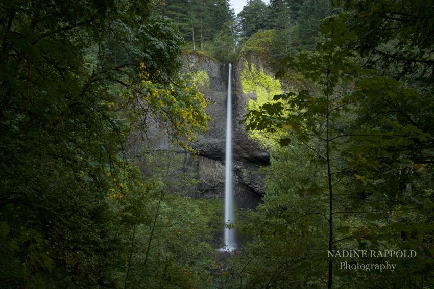 Oregon Latourell Falls Wasserfall