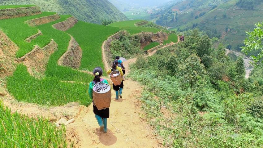Sapa Vietnam Trekking Gummistiefel
