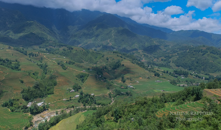 Sapa Vietnam Landschaft Reisfeld